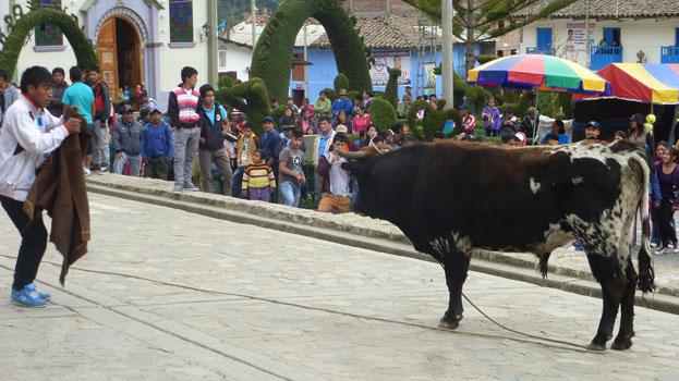 conchucos2014b